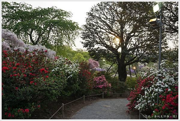足利花卉公園-67.JPG