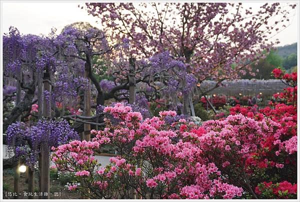 足利花卉公園-78.JPG