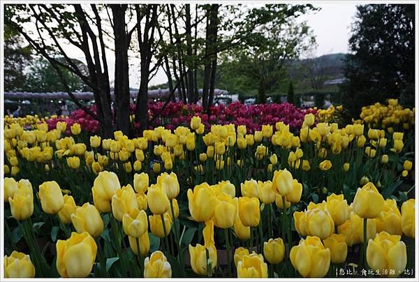 足利花卉公園-95.JPG