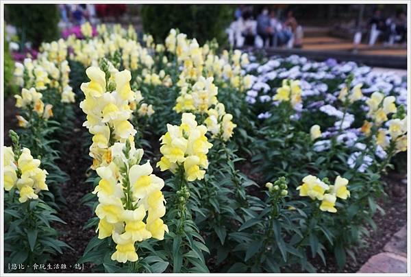 足利花卉公園-97.JPG