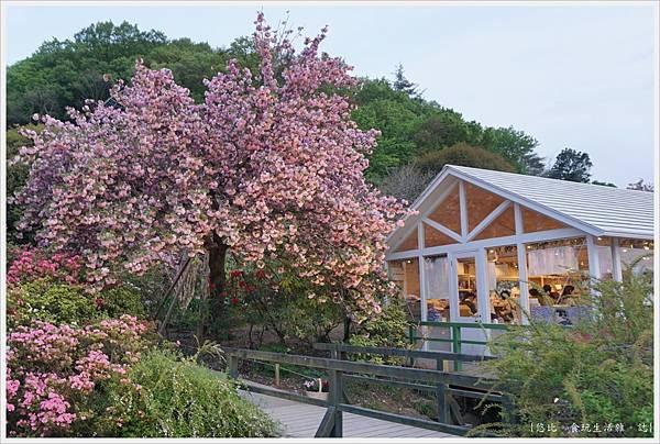 足利花卉公園-100.JPG