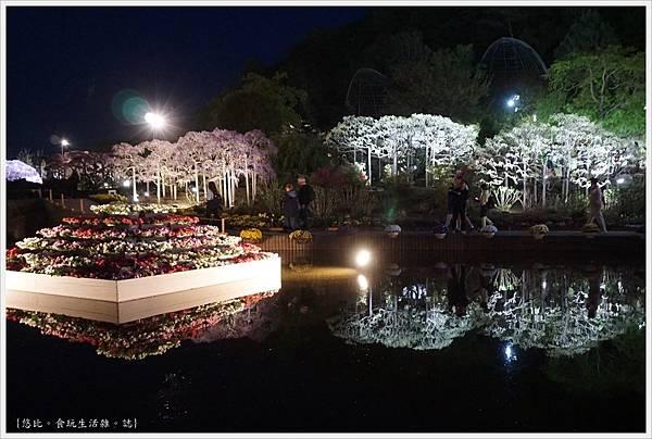 足利花卉公園-126.JPG