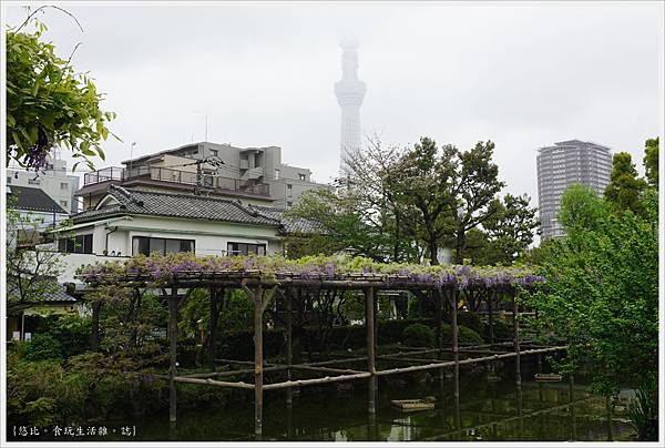 龜戶天神社-5.JPG
