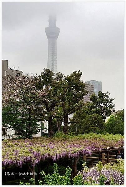 龜戶天神社-75.jpg