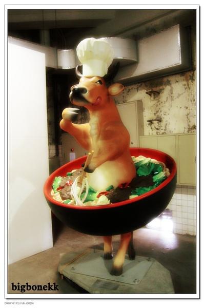 奔牛節:黃牛肉麵牛