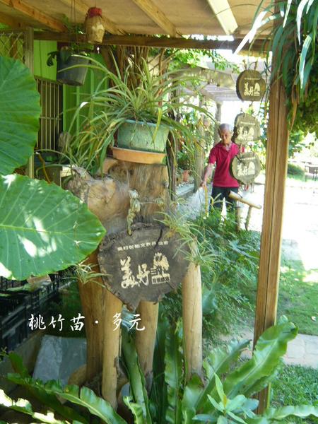 桃園龍潭,美好農村 018.png