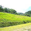 北埔大湖2.png