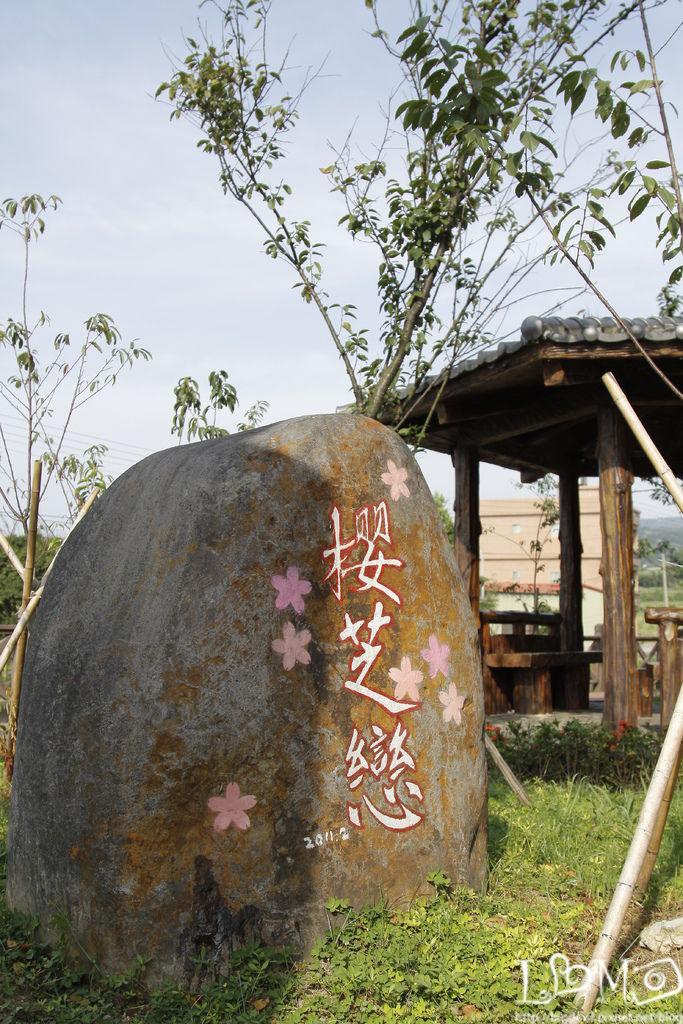 三芝~櫻花水車