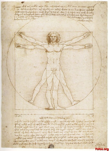 3Leonardo-Da-Vinci-Vitruvian-Man.jpg
