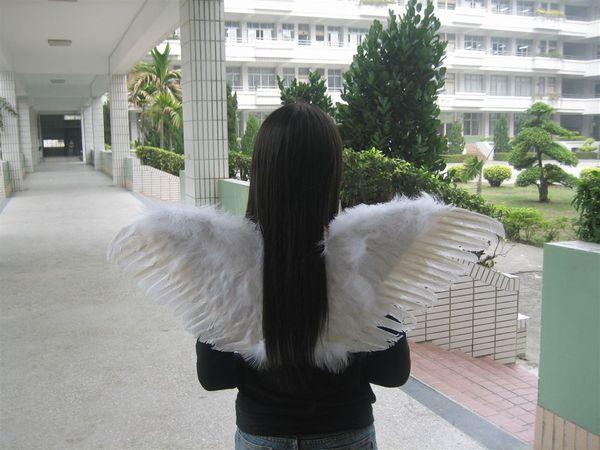 美髮+翅膀