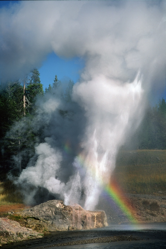 18 Dennis K. Chin         Yellowstone National Park.jpg