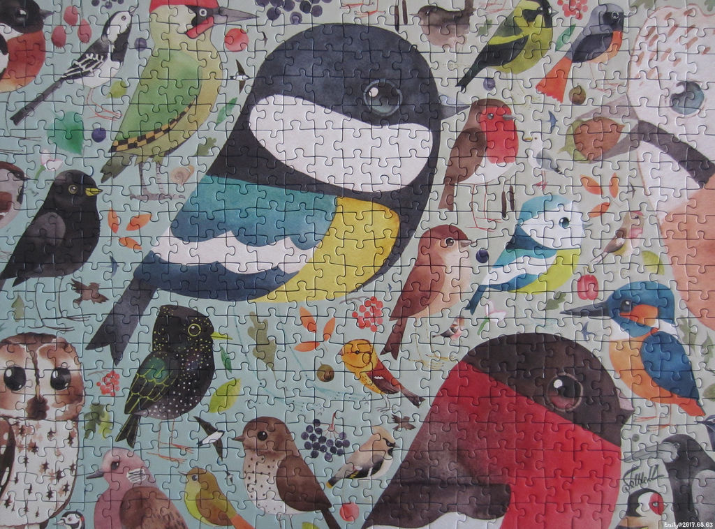 《艾‧拼圖-861》Our British Birds.jpg