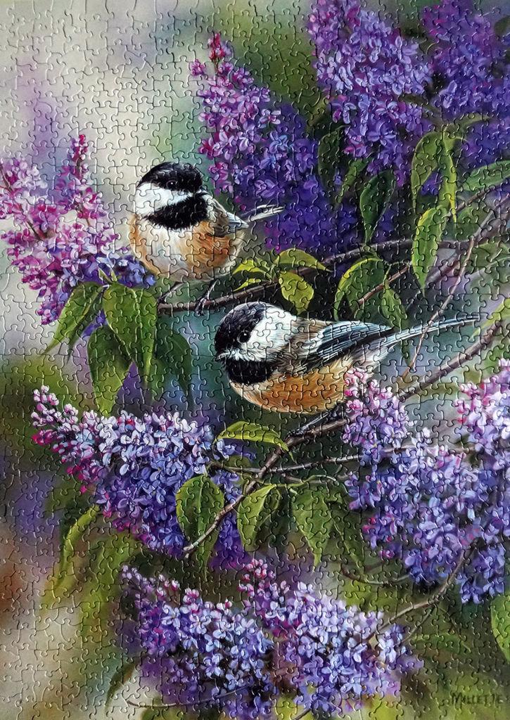 《艾‧拼圖-898》Chickadees and Lilacs.jpg