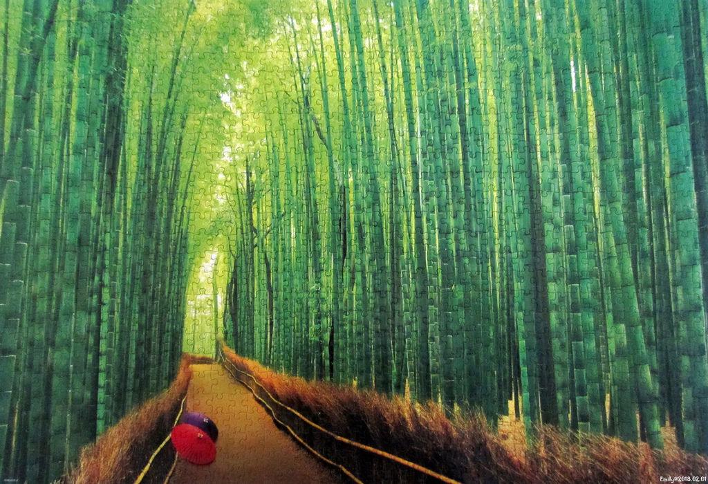 《艾‧拼圖-986》Bamboo Forest in Kyoto.jpg