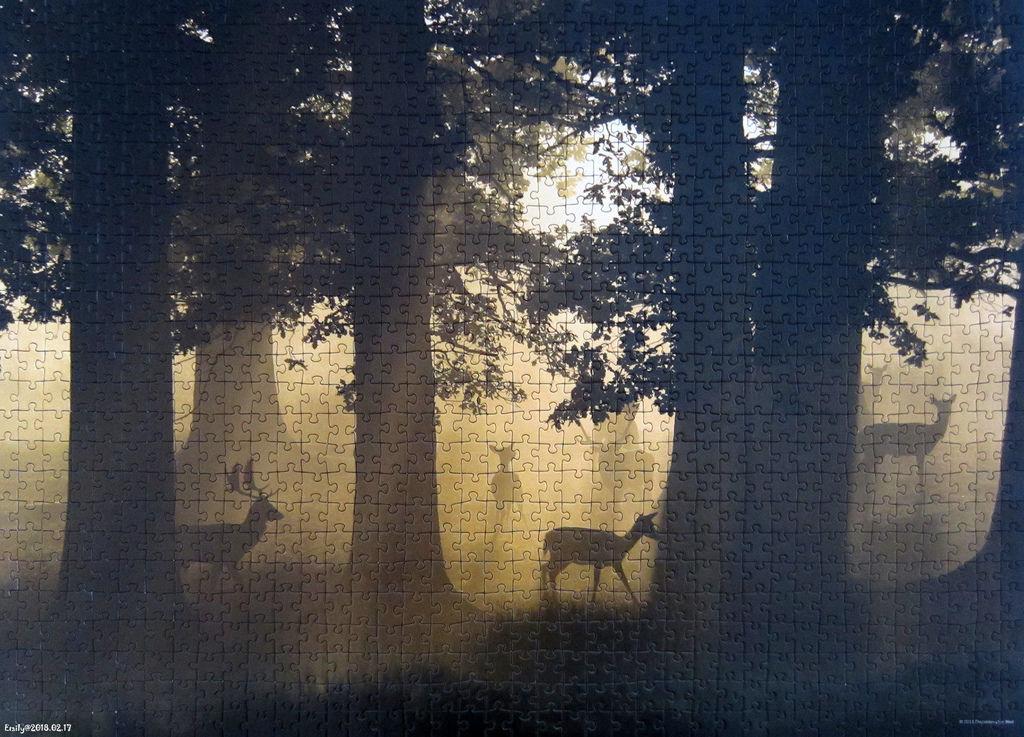 《艾‧拼圖-989》Magic Forests - Deer.jpg