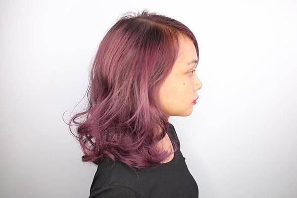 莓果色系 (需漂髮、退色)