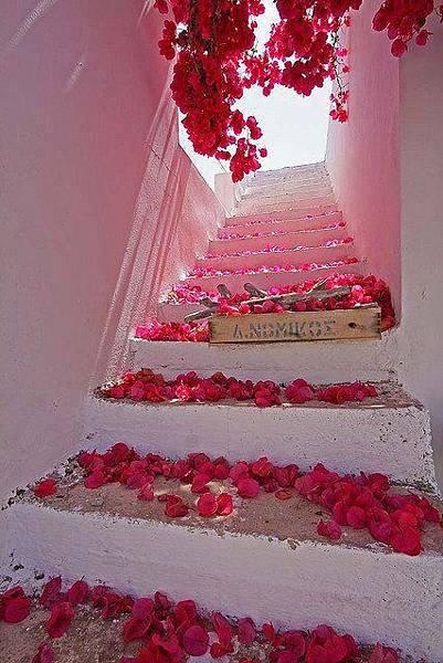 通往愛情的階梯