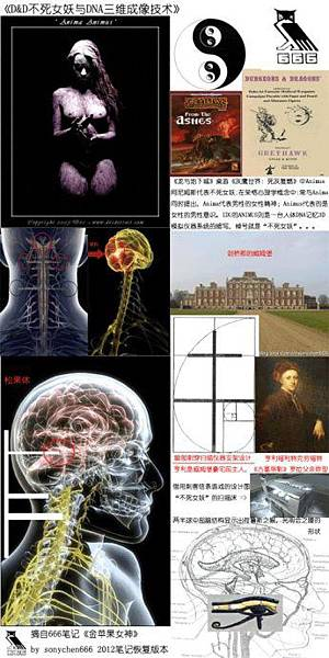 三維成像技術