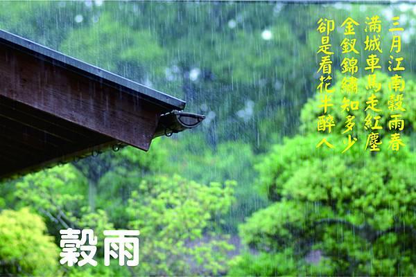 穀雨1.jpg