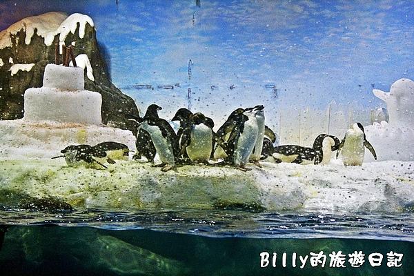 國立海洋生物博物館028.jpg