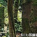 基隆荖寮坑礦業生態園區28.jpg