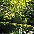 基隆荖寮坑礦業生態園區47.jpg