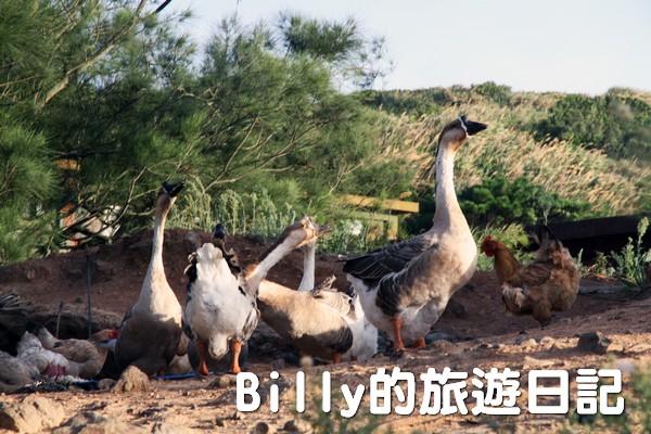 馬祖東莒民宿-鴻景山莊018
