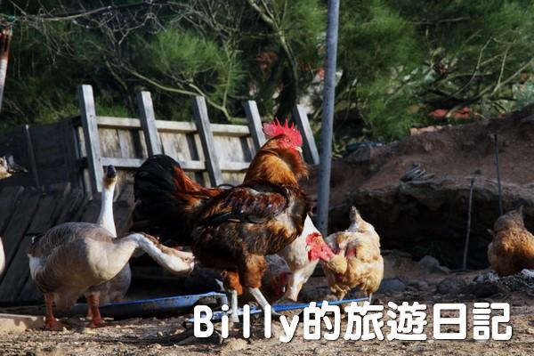 馬祖東莒民宿-鴻景山莊020