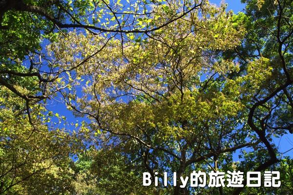 四腳亭砲台012