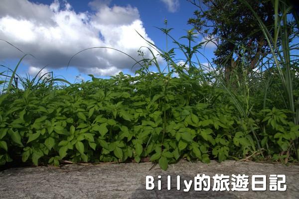 四腳亭砲台079