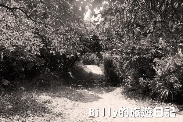獅球嶺東砲台001