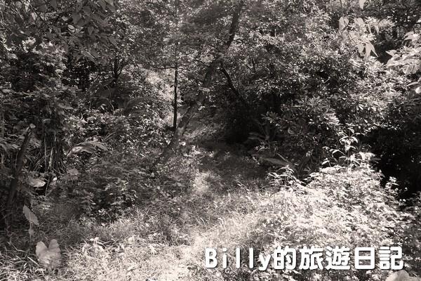 獅球嶺東砲台002
