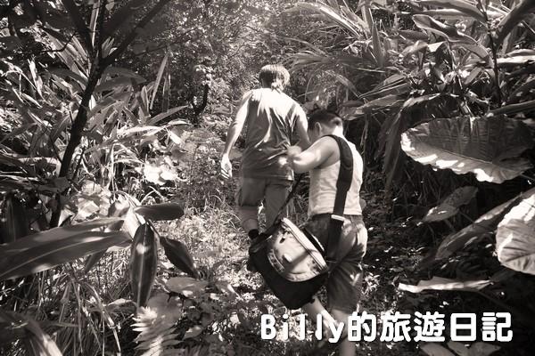 獅球嶺東砲台005
