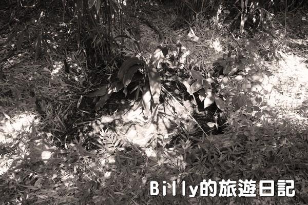 獅球嶺東砲台006