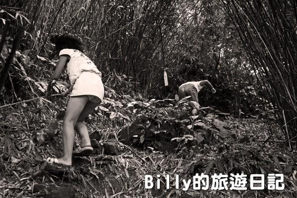 獅球嶺東砲台008