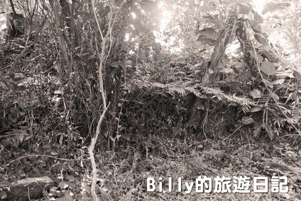獅球嶺東砲台010