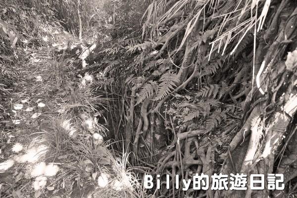 獅球嶺東砲台011