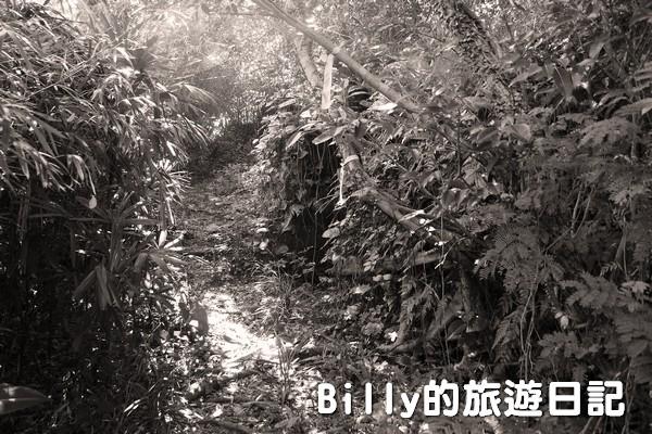 獅球嶺東砲台020