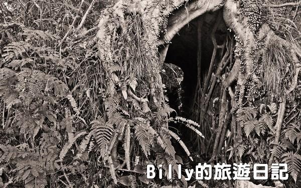獅球嶺東砲台022