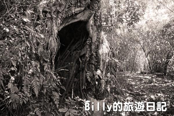 獅球嶺東砲台023