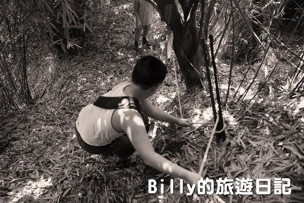 獅球嶺東砲台028