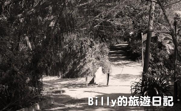獅球嶺東砲台031