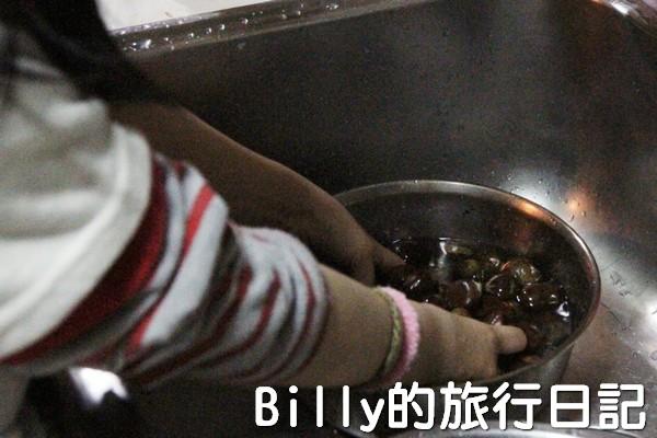 天津栗子05