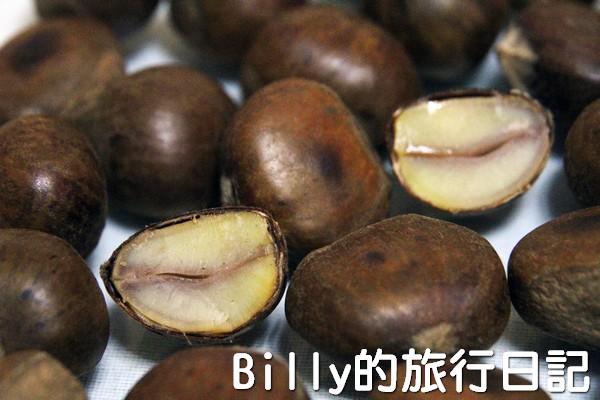 天津栗子23