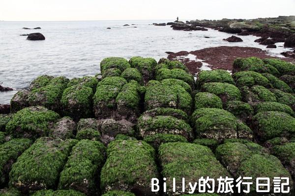 基隆和平島綠魔菇08
