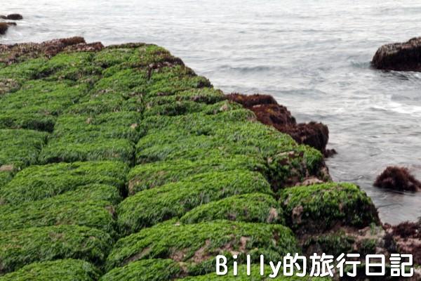 基隆和平島綠魔菇10
