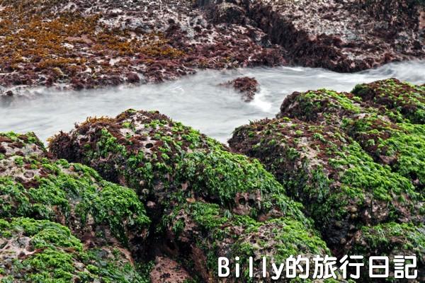 基隆和平島綠魔菇15