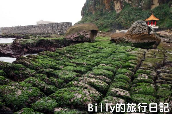 基隆和平島綠魔菇17
