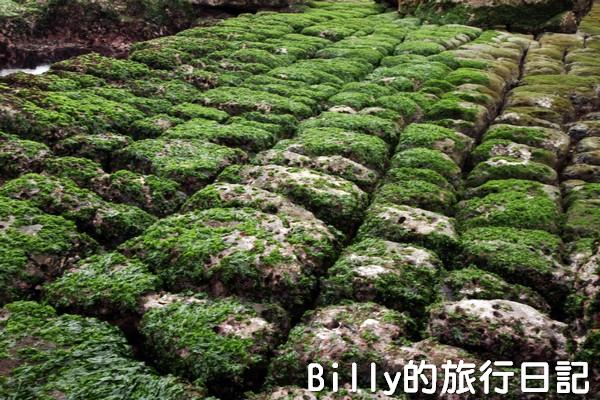 基隆和平島綠魔菇18