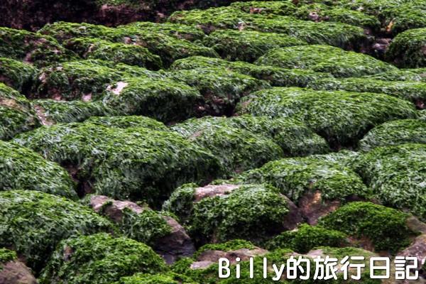 基隆和平島綠魔菇21